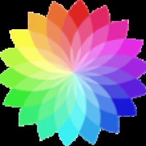 color powder company